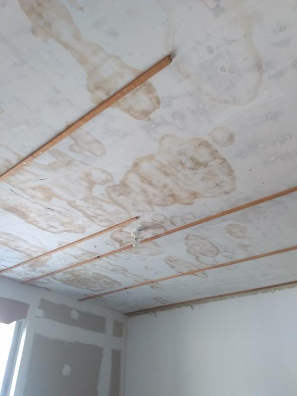 pose d 39 un plafond sur rail en placoplatre angers r novation proposez vos services. Black Bedroom Furniture Sets. Home Design Ideas