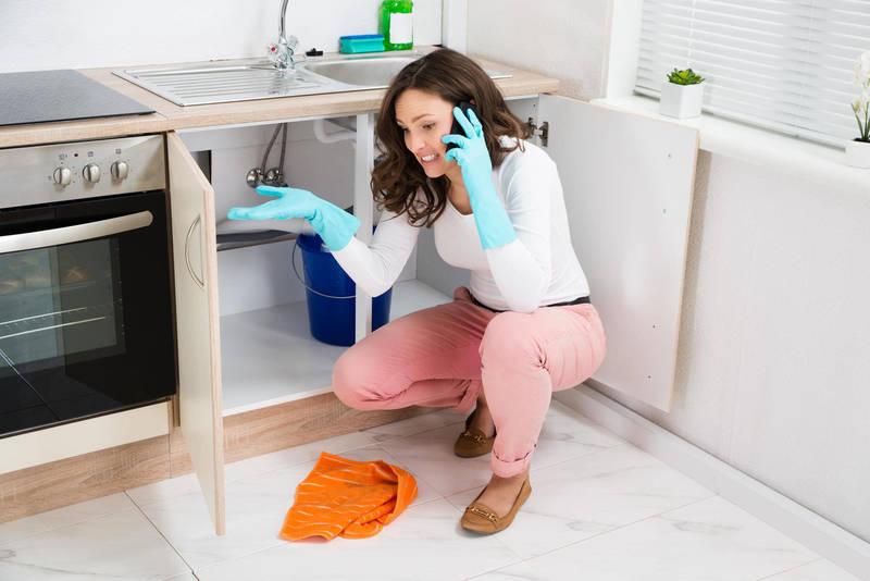 Ménage-Frizbiz site de jobbing