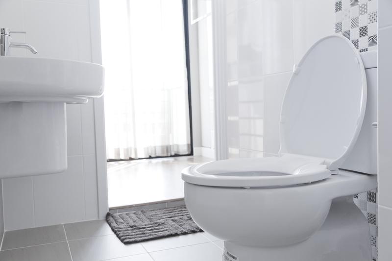Pourquoi et comment changer la lunette des WC ?