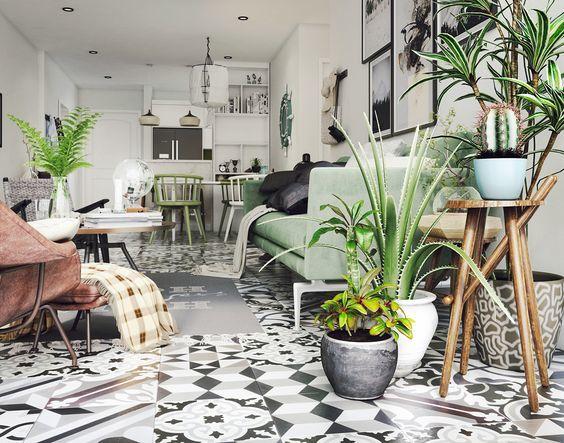 Comment bien arroser des plantes d'intérieur ?