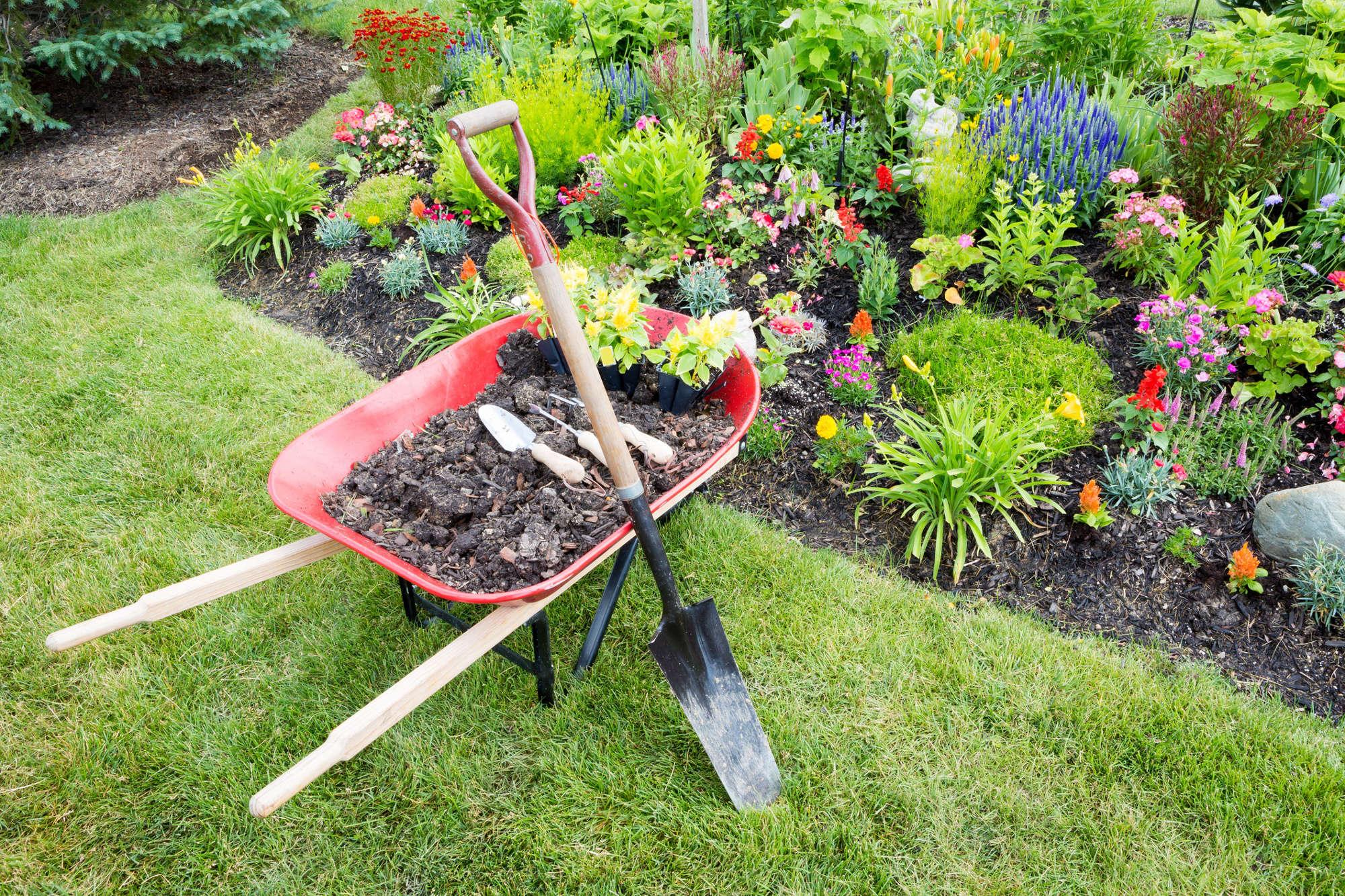 Photo Jardin Zen Chez Particulier que planter dans son jardin en été ?