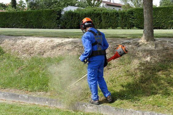 Combien coûte le débroussaillage d'un jardin ?