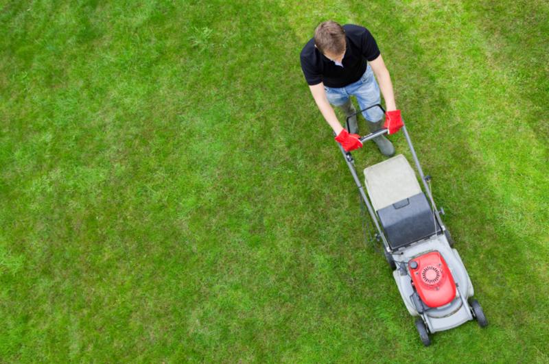 Quel est le tarif pour faire tondre une pelouse ?