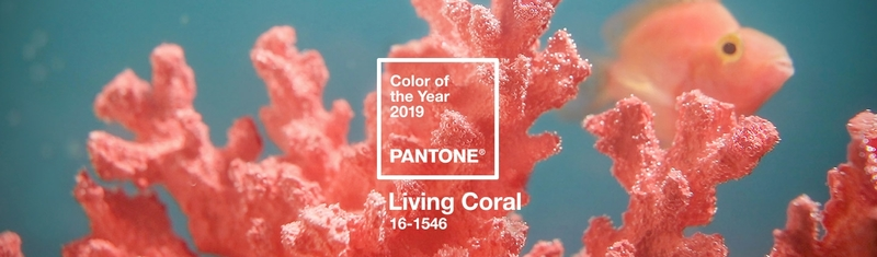 Living Coral : la couleur de l'année 2019 va réchauffer votre intérieur !