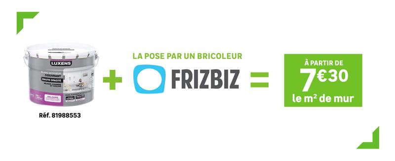 Frizbiz, la solution dans tous les magasins Leroy Merlin de France !